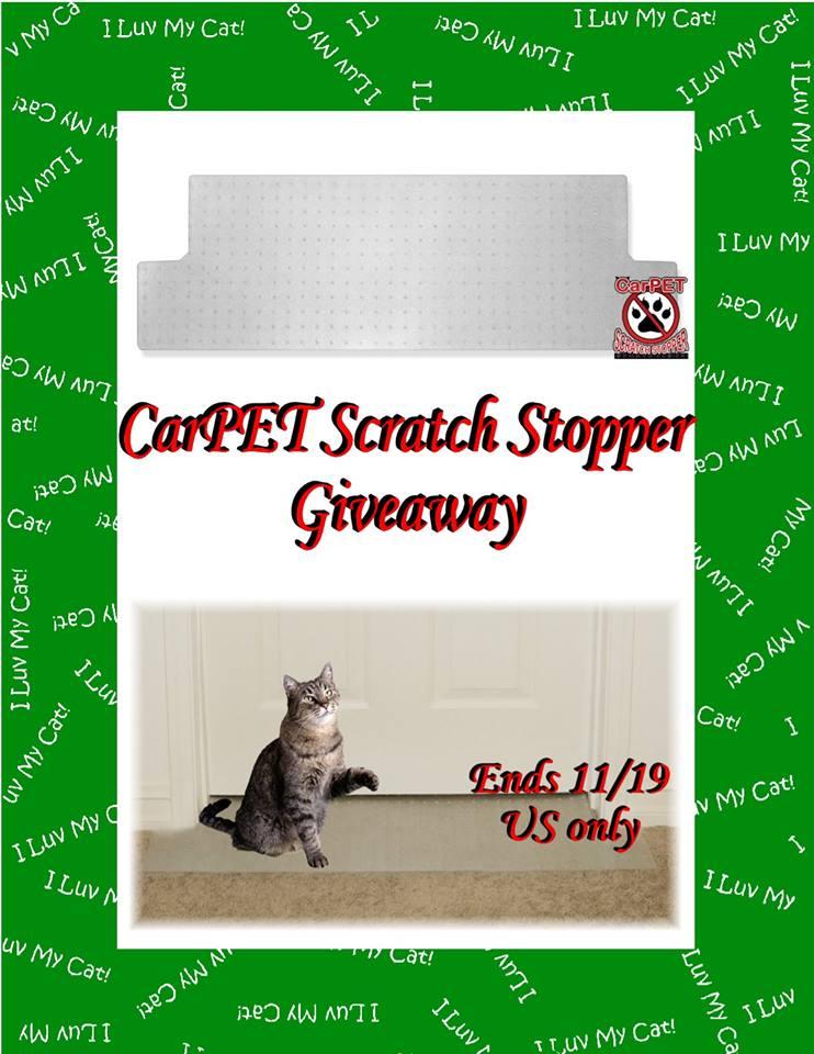 carpet scratch stopper