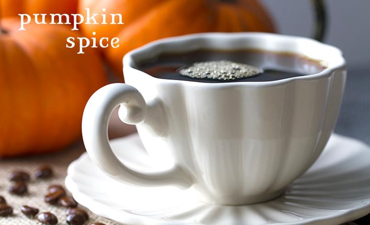 coffee bean direct pumpkin