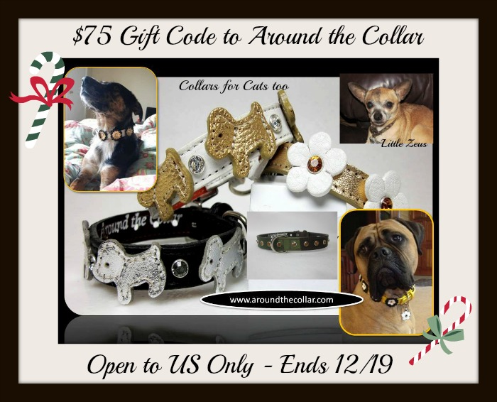 Collar for Cats and Dogs