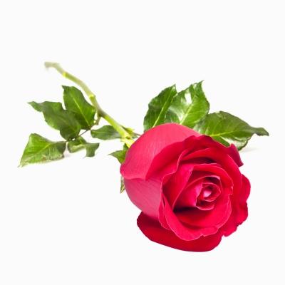 Inexpensive Valentine's Day Gift Ideas