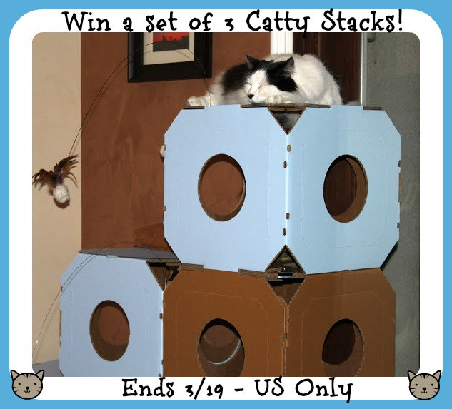 catty-stacks-3button