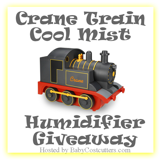 cool-mist humidifier