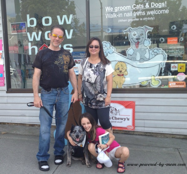 bow wow haus pet pampering