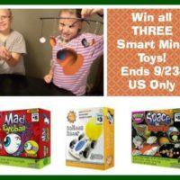 smart minds toys